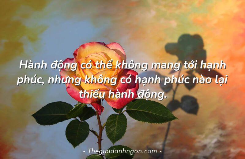 hanh dong co the khong mang toi hanh phuc nhung khong co hanh phuc nao lai thieu hanh dong - Chào mừng bạn đến với Thế giới danh ngôn