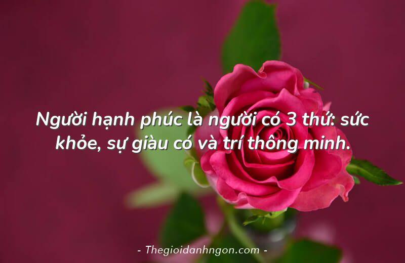 nguoi hanh phuc la nguoi co 3 thu suc khoe su giau co va tri thong minh - Chào mừng bạn đến với Thế giới danh ngôn