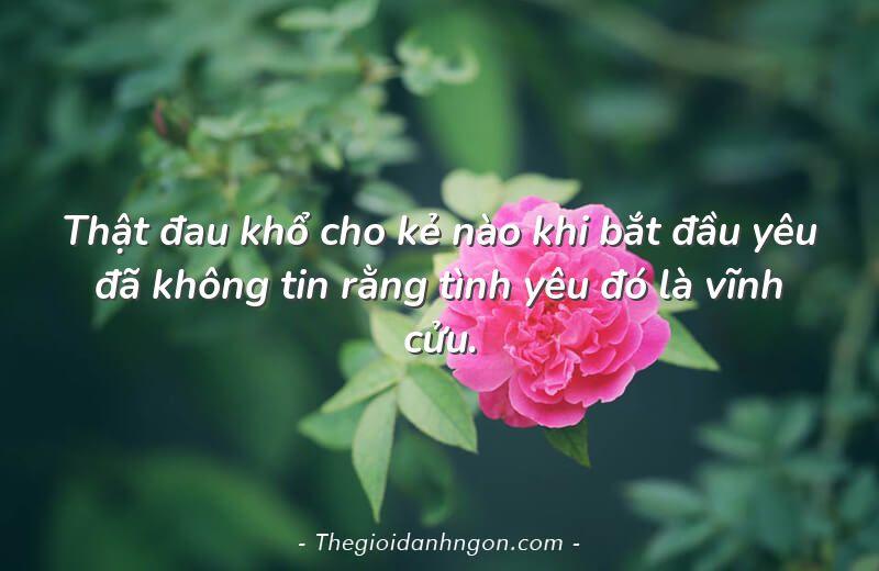 Thật đau khổ cho kẻ nào khi bắt đầu yêu đã không tin rằng tình yêu đó là vĩnh cửu.