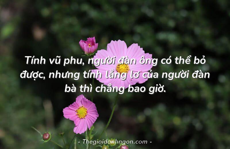 tinh vu phu nguoi dan ong co the bo duoc nhung tinh lang lo cua nguoi dan ba thi chang bao gio - Chào mừng bạn đến với Thế giới danh ngôn