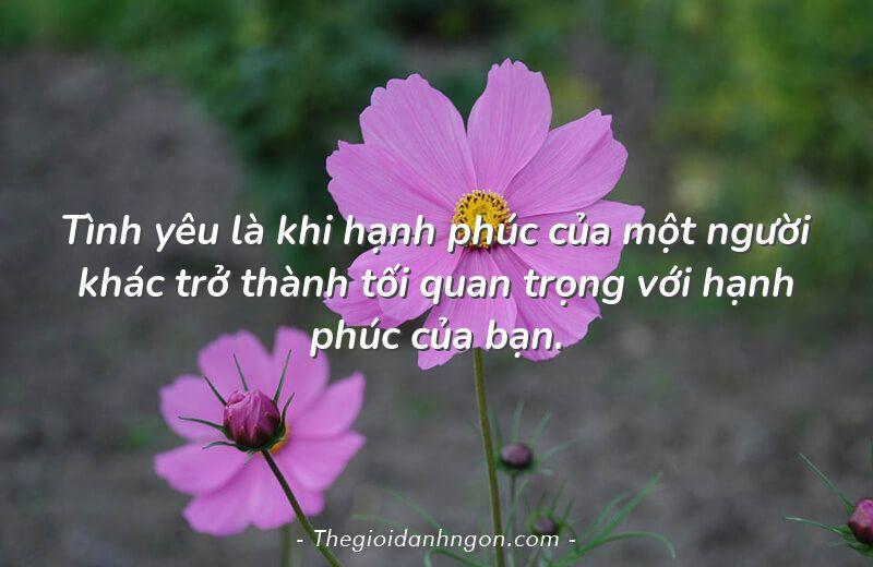 tinh yeu la khi hanh phuc cua mot nguoi khac tro thanh toi quan trong voi hanh phuc cua ban - Chào mừng bạn đến với Thế giới danh ngôn